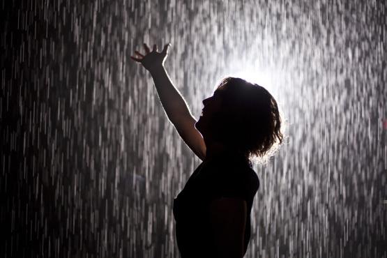 Tags moma moma rain room you might also like 2 años ago ideas visitar